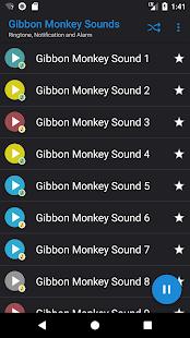 Appp.io - Gibbon opice zvuky - náhled