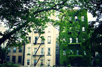 Photo: Ivy covered buildings framed by trees. New York City Marble Cemetery.   East Village, New York City.  View the writing that accompanies this post here at this link on Google Plus:  https://plus.google.com/108527329601014444443/posts/RMNFq7kwF3p  View more New York City photography by Vivienne Gucwa here:  http://nythroughthelens.com/