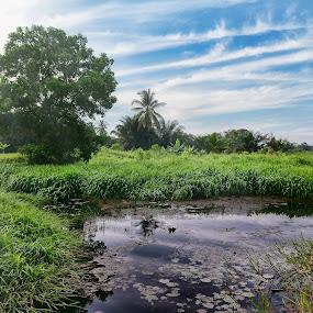 Denai by Syafizul  Abdullah - Landscapes Prairies, Meadows & Fields
