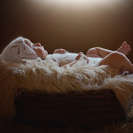 Winter Rose by Darya Morreale - Babies & Children Babies ( baby in a basket, backlight, bonnet, baby girl, newborn )