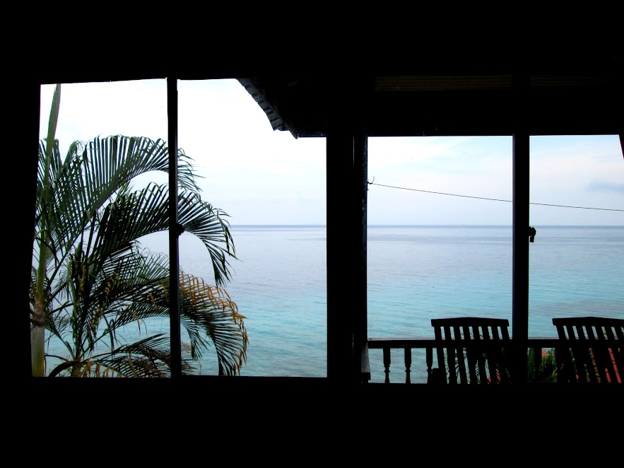 View from inside my room.