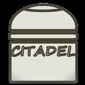 Citadel Paint PRO