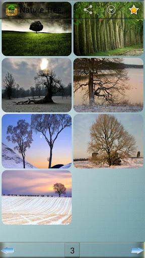 免費下載娛樂APP|自然樹壁紙 app開箱文|APP開箱王