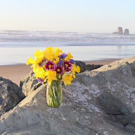 Flowers on the Rocks by Terese Hale - Landscapes Beaches ( color, bright, ocean, beach, flowers,  )