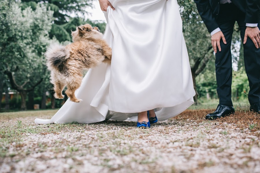 Wedding photographer Roman Pervak (Pervak). Photo of 13.07.2016
