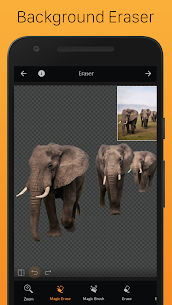PhotoCut – Background Eraser & CutOut Photo Editor 3