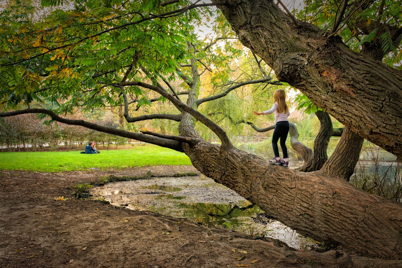 Equilibrio precario per passare oltre di Concetta Caracciolo