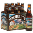 Logo of Wachusett Nut Brown Ale