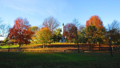 Photo: autumn colours in Boston