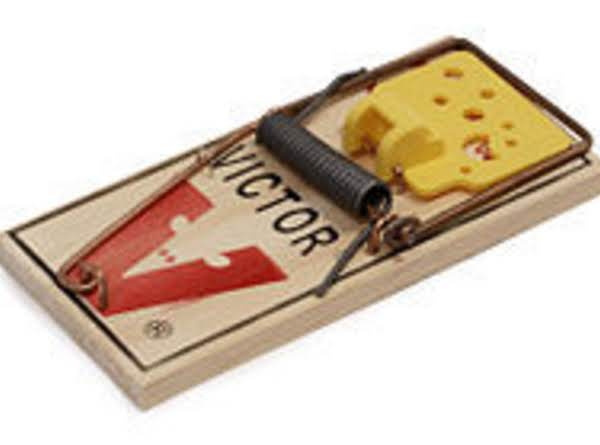 Mouse Traps For Camping Recipe