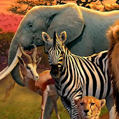african animal wallpapers