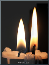Photo: ljus - candle