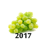 New Year's Grapes 2017