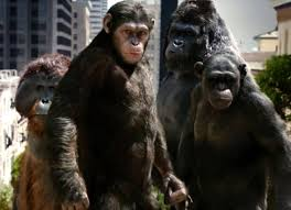 Image result for planet of the apes orangutan