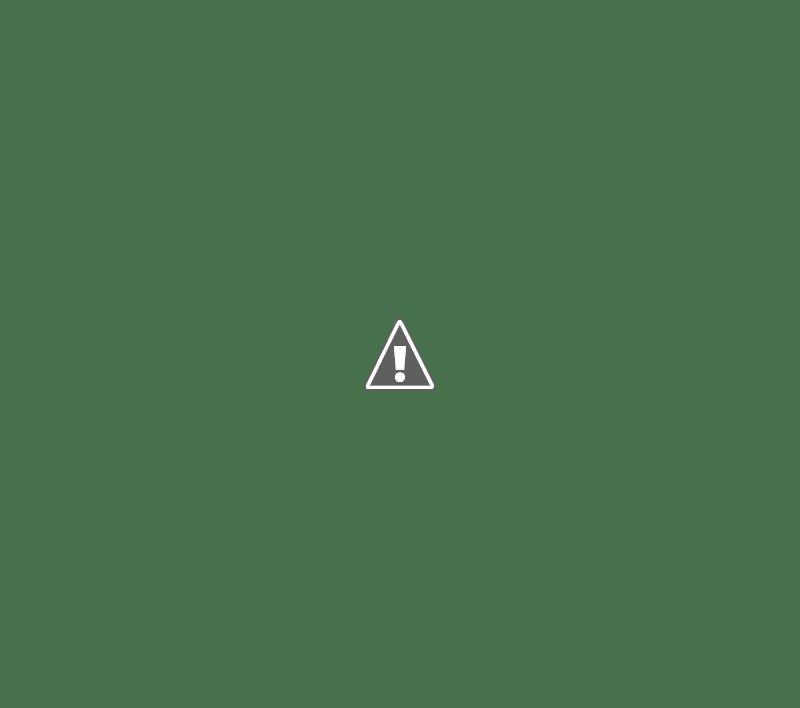 LA FIESTA NACIONAL DEL MANÍ CONVOCA A LA PRE-SELECCIÓN DE CANDIDATAS A SOBERANAS 2019