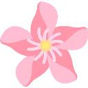 Peonies Flower Wallpapers NewTab Theme
