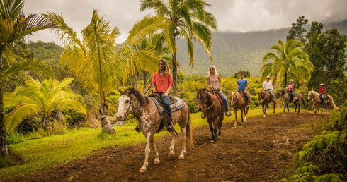 Group Ride in Hawaii