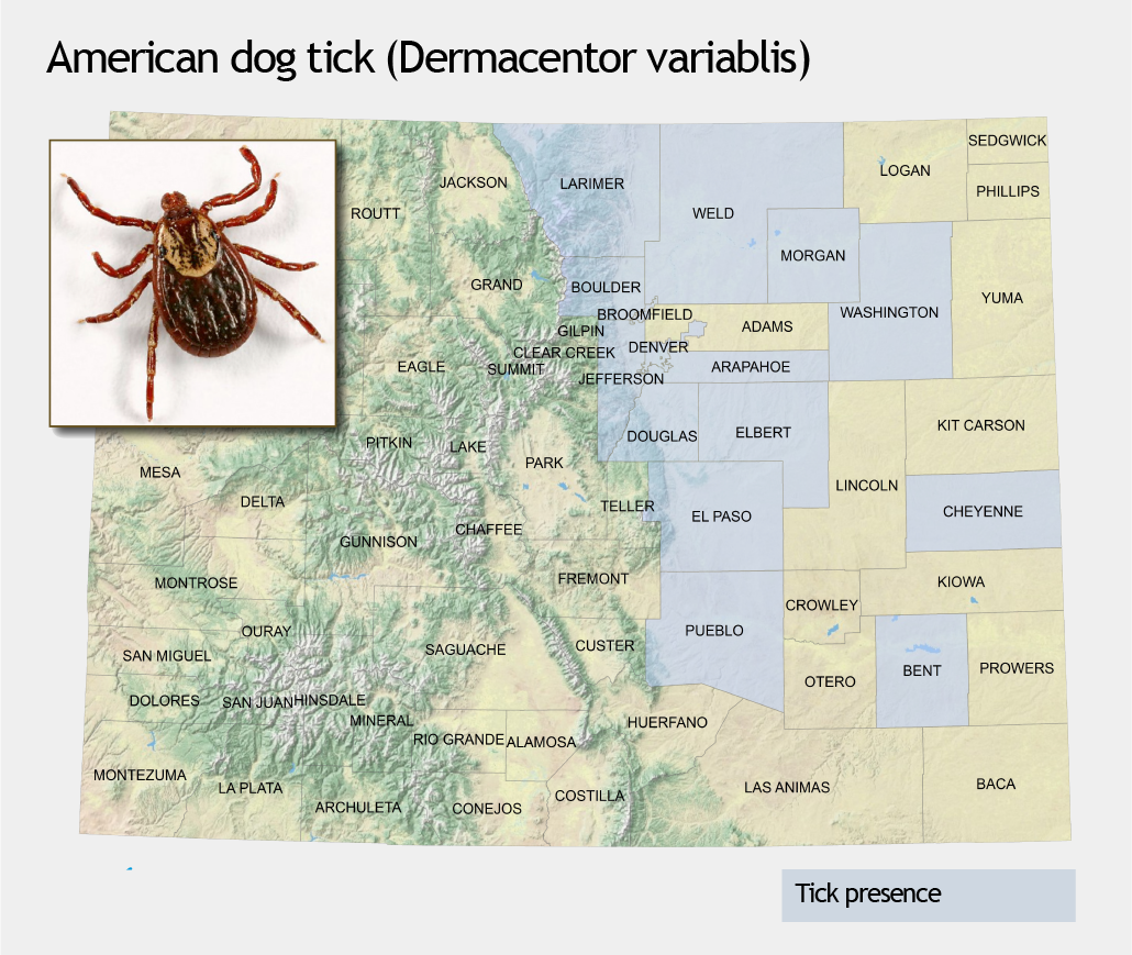 Colorado Tick Borne Disease Awareness Association Cotbdaa - Map-of-ticks-in-us