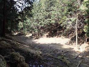 谷間は湿地