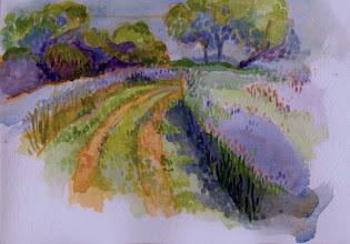 Photo: 1999 Bonnie's path. Ridgeway, WI. Watercolor.
