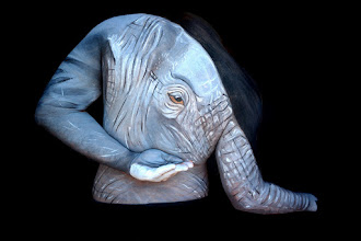 Photo: Bodypainting elefante