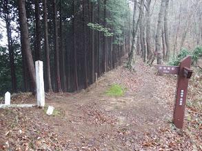 林道へ下山