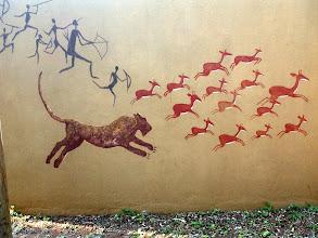 Photo: Everyone loves impala