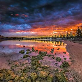 Encounter Bay Sunset by Nicole Rix - Landscapes Sunsets & Sunrises ( water, clouds, tree, sunset, seascape, rocks,  )