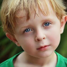 In His Eyes by Katie McKinney - Babies & Children Child Portraits ( child, face, blue, children, kids, hair, boy, portrait, kid, eyes,  )