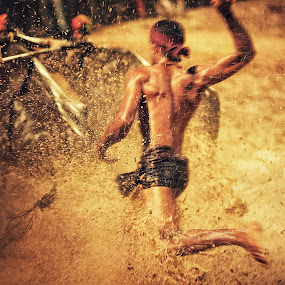 Kambala, Buffalo Race  by Soumya Geetha - Sports & Fitness Other Sports