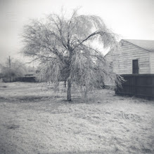 Photo: Believed to Joe Bernard Tillery and Grace Katherine Martin Tillery' home in Lubbock 1954