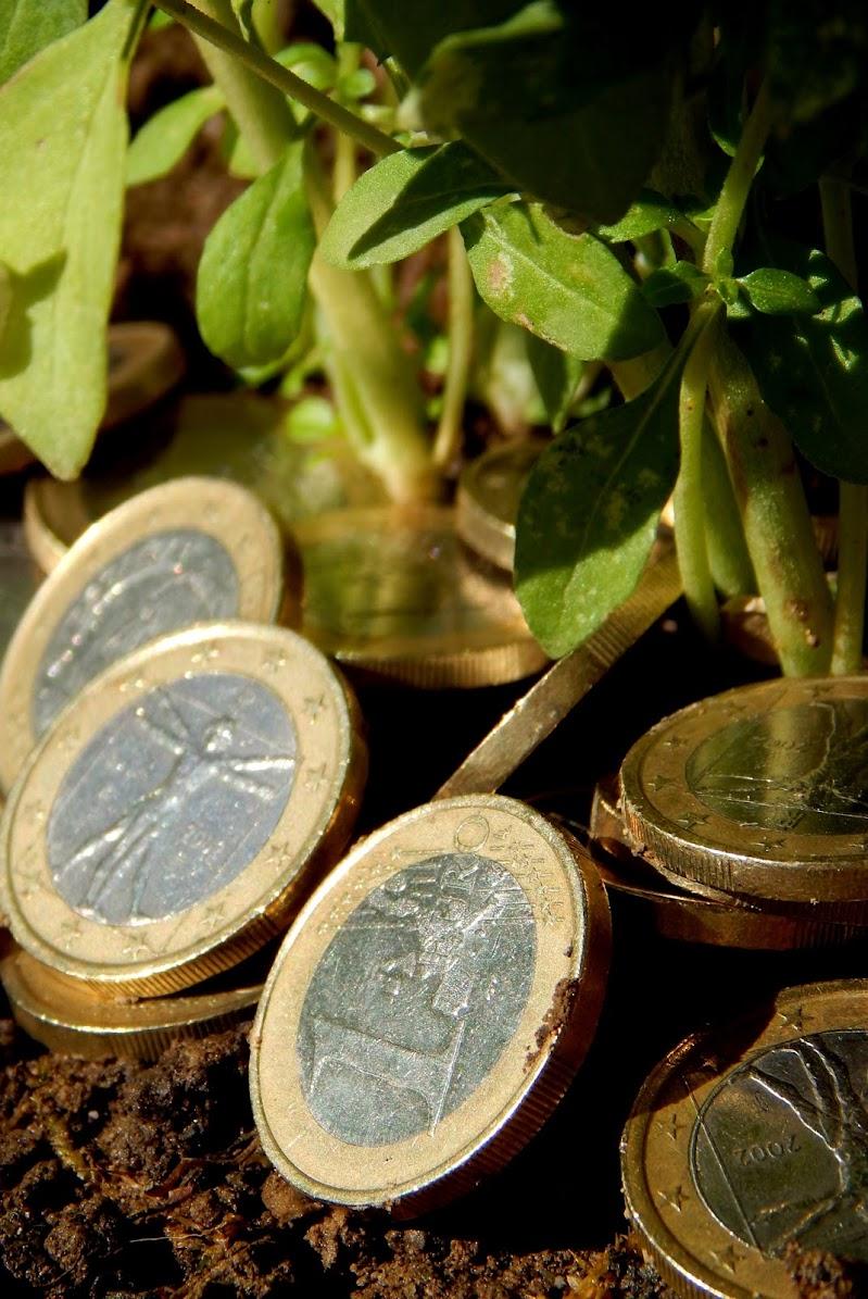Economia Sostenibile? di abi313