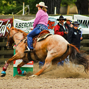 Barrel Racing 7 by Russell Benington - Animals Horses ( rider, barrel racing, arena, horse, rodeo,  )