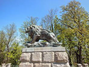 Photo: Der Löwe am Schloßberg