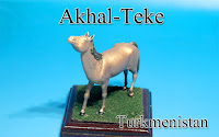 Akhal-Teke ‐Turkmenistan‐