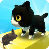 Zara Cat - New Games of the Month
