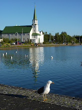 Photo: Reykjavík, See Tjörnin mit Fríkirkja