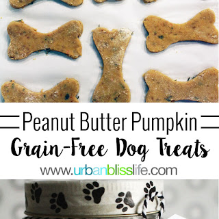 Grain-Free Peanut Butter Pumpkin Dog Treats.