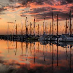 into the pink by Julija Moroza Broberg - Transportation Boats ( clouds, reflection, sky, sunset, boats, pink, formation, yachts )