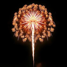 Burst in a burst by Mike Lennett - Public Holidays July 4th ( fireworks, mike lennett )