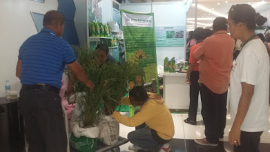 Photo: An exhibit on SRI at the National Organic Agriculture Congress in Bacolod, The Philippines.  [Photo courtesy of Joby Arandela, The Philippines, 2015]