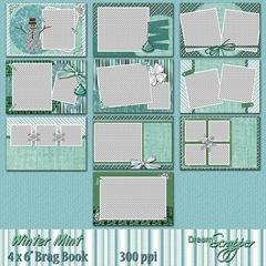 Winter Mint 4 x 6 Brag Book