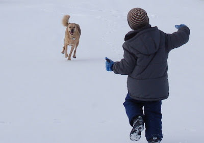 Hello Friend! Dog and his boy greeting each other.