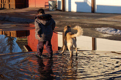 Boy and his dog rippling up their puddle reflection.