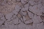 Dry cracked mud.