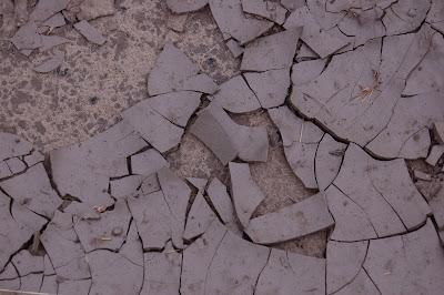 Dry cracked mud.