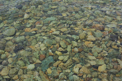 Rocks in the tidal water, Bostwick Inlet, near Kechikan, Alaska.