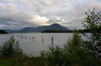 Pilings, tide near Ketchikan Alaska.