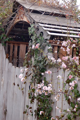 Nice gate. Boise, ID.