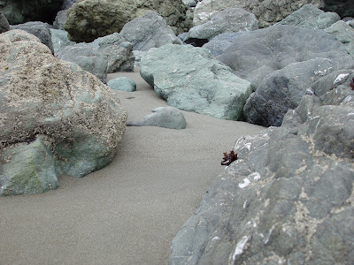 Rocks, Barnacles and Sand - Muir Beach, CA.